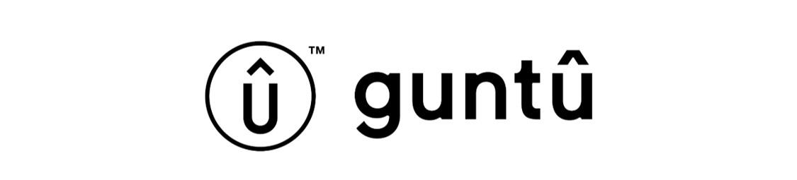客船「guntu(ガンツウ)」の運航再開について