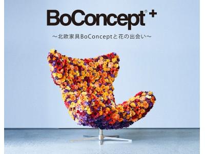 【前田有紀×BoConcept】BoConcept が渋谷ヒカリエにオープン