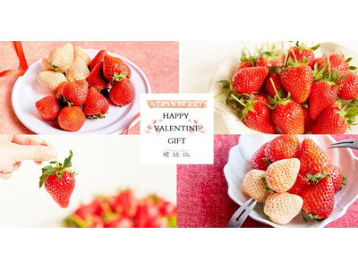 【ファミリーバレンタイン】蝶結びが提案する「家族で楽しめるフルーツの贈り物」