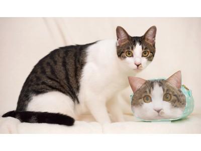 うちの猫(こ)をポーチに!愛くるしい表情がたまらない猫の顔写真で『リアルねこポーチ』を作ろう!