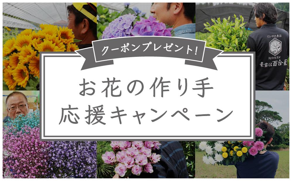 お花の作り手を応援!新鮮なお花を30%OFFで購入できるクーポンをプレゼント!