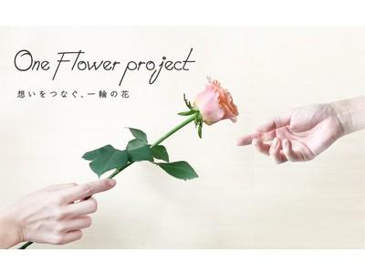 お花の生産者を応援する「ワンフラワープロジェクト」をスタート!最高品質の一輪のバラを実質無料でお届けするキャンペーンを開催