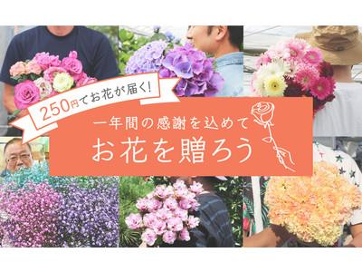 お花のつくり手を応援「よいはな」、250円(税/送料込)でお花をお届けするキャンペーンを開始!