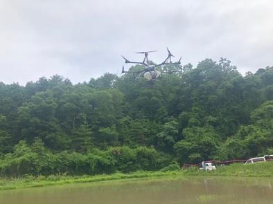 水田にドローンでコメの種まき(水稲直播)を大阪初実施 画像