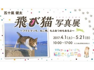 大ヒットねこ写真集『飛び猫』のカメラマン五十嵐健太の全国巡回写真展が開催! 最新刊『もふあつめ』から選り...