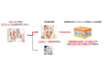 スキンケア時に生じるポジティブな感情により、肌内部の遺伝子発現が変化!