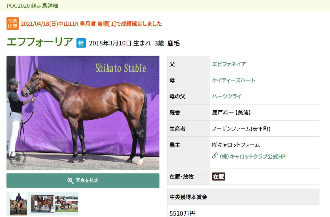 5月1日「馬トク」サイトで馬体写真公開 POGプリントは発売中【スポーツ報知】