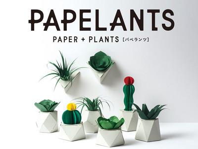 全て紙でできた、新しいカタチの植物たち「PAPELANTS(パペランツ)」新発売!