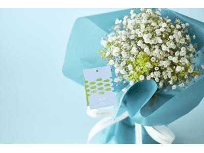 【青山フラワーマーケット】七夕にだけ逢える花、カスミソウ。天の川にみたてた星屑の花束を販売します。