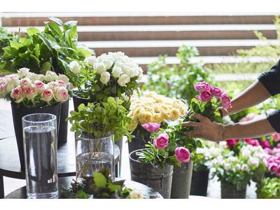 花をより長く、より美しく楽しむための青山フラワーマーケットのケアグッズが8月限定でお買い得に!