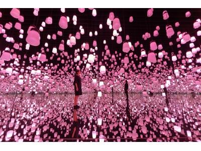 東京・お台場「エプソン チームラボボーダレス」 季節とともに移ろう、【春】にだけ見られる作品群が登場
