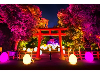 チームラボ、京都の世界遺産 下鴨神社にて今年もアート展。規模を拡大した「下鴨神社 糺の森の光の祭 Art by teamLab - TOKIO インカラミ」令和元年8月17日から9月2日まで