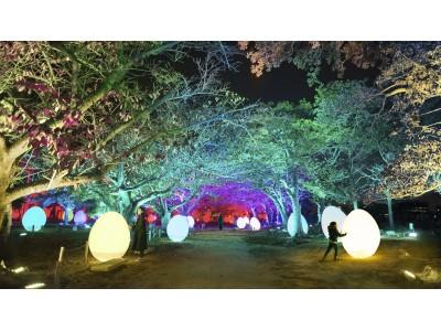 「チームラボ 福岡城跡 光の祭 2019-2020」11月29日から。今年も夜の福岡城跡がインタラクティブな光のアート空間に。前売チケット販売中