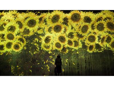 東京・お台場「チームラボボーダレス」に、10万本まで増殖し、一斉に散り朽ちていく巨大な花など、2つの作品が新たに登場。季節とともに移ろう【夏】にだけ見られる作品も。8月はひまわりが咲き渡ります。