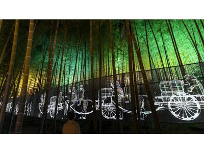 水戸の梅まつり「チームラボ 偕楽園 光の祭」のチケット販売開始。3000本の梅が咲き競う、日本三名園・偕楽園の梅がインタラクティブに光り輝く。3月1日(月)から3月31日(水)まで。
