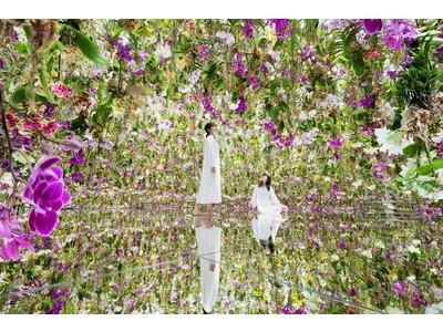 チームラボプラネッツ(東京・豊洲)が、7月2日から拡張。2つの庭園が新たに誕生し、「水に入るミュージアムと花と一体化する庭園」に。