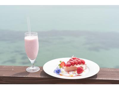 全席オーシャンビュー!福岡・糸島の海辺のカフェ『HACHIDORI』が店内をリニューアル。期間限定で「あまおう」苺を使ったタルト・スムージーを販売開始