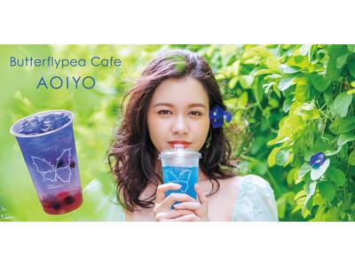 沖縄初!! 話題のバタフライピーの世界観が体験できる「Butterflypea Cafe AOIYO」が浦添PARCO CITYに期間限定オープン!!