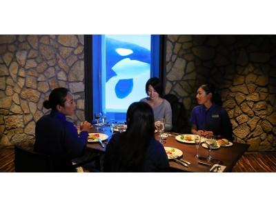 夕食は女性トレーナーと一緒にシャチが見えるレストランでセミコース!大人気!週末の女子会プラン 「レディースナイトステイ」開催