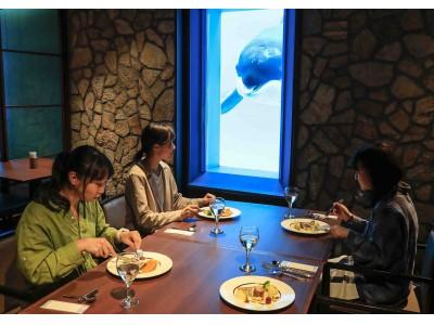 """週末は""""水族館女子会""""を楽しもう!夜の水族館探検やシャチを見ながら食事ができるレストランでセミコースを堪能女性限定の特別体験プラン 「レディースナイトステイ」開催"""