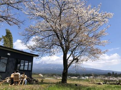 「MT. FUJI SATOYAMA VACATION」この春、富士山と桜に囲まれたプライベートグランピングいかがですか?