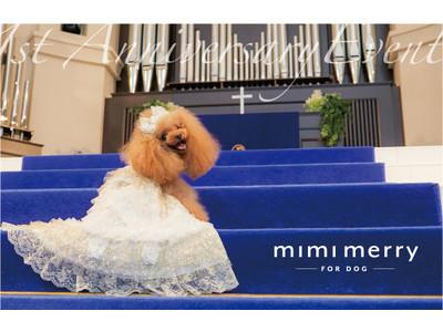 コラボ企画【mimimerry×accu milia×Cuun】憧れのウェディング会場でプロフォトグラファーによる写真撮影会!