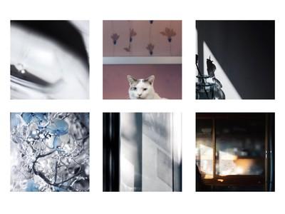 写真家・桜田 真碧の作品をファッションで楽しむオンラインショップ「 sakurada_mao 」が 1月30日 オープン
