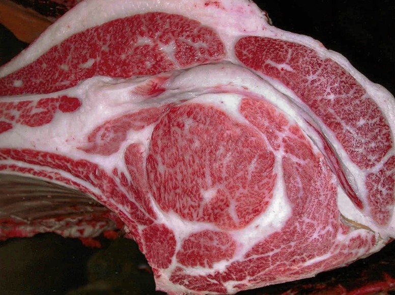 大阪の老舗肉店「竹福」が創業60周年を記念し、チャンピオン牛プレミアムセットを限定発売