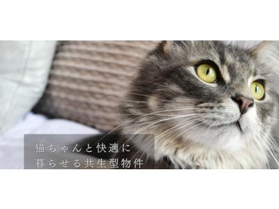 都内最大級、「猫と暮らすRCデザイナーズ賃貸 feel CnB(フィールシーアンビー)」が、これから猫さんと暮らす方のための「保護猫お迎えキャンペーンを開始!」