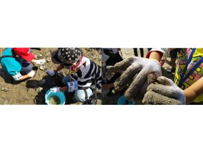 広島の小学生(5年生、6年生)24名が参加! 広島県竹原市で海の体験イベント「瀬戸内こども調査団~海の宝、『ハチの干潟』に学ぶ」を開催しました!