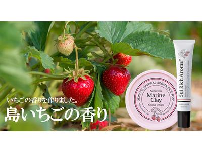 【新商品】春到来!島いちごの甘酸っぱい香りができました。