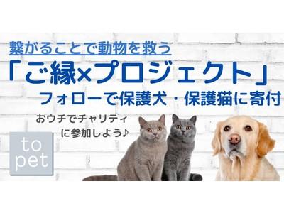 フォローで保護犬・保護猫たちに寄付できます!topetが保護団体支援の『ご縁×プロジェクト』を実施