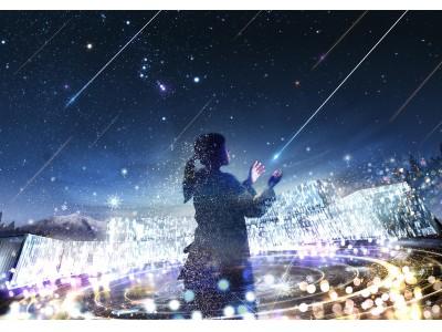 【日本一の星空の村・阿智村×ネイキッド】日本一の星空と雪とマッピングが織りなす自然のイルミネーション