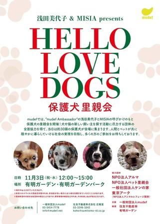 """横浜市の「ちっちゃな、保護犬支援団体ケンの家」は""""浅田美代子 &MISIA presents HELLO LOV..."""