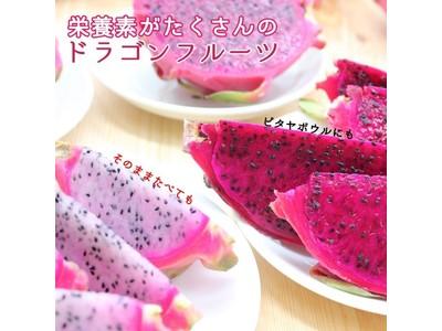 ビビッドなカラーが特徴!鹿児島県産の「ドラゴンフルーツ」が産地直送通販サイト「JAタウン」で販売開始!
