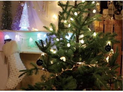 我が家のクリスマスデコレーターが見つけてきた「LEDガーランド」。さすが!クリスマスが終わったあとも使えそう。