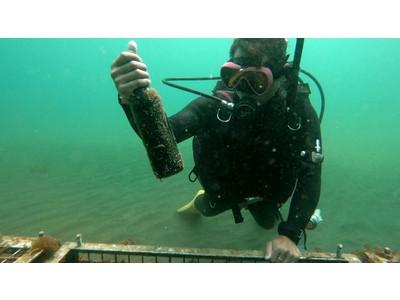 【新サービス】好きなお酒を1本から海底熟成!海底貯蔵庫サービス「美しき海のワイナリー」登場!