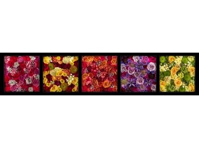 「はなれていても、ありがとうは、伝えられる。」 ニコライ・バーグマンとコラボした 母の日のデジタルグリーティングカード 「Flower Letter」