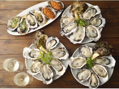 食欲の秋に!大人気の焼き牡蠣も食べ放題に!!『生牡蠣など牡蠣料理6品 食べ放題』
