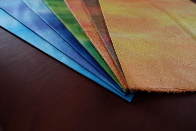 千年以上の歴史。仁淀川の清流が生み出す「土佐和紙」  世界一薄い和紙「土佐典具帖紙」等、伝統工芸の取組みと現代の匠たち
