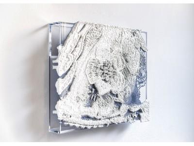 京都初、芳木麻里絵 個展『fond de robe ―内にある装飾―』