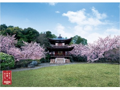 【蔦屋書店】「そうだ 京都、行こう。」×蔦屋書店コンシェルジュが提案する新しい京都。