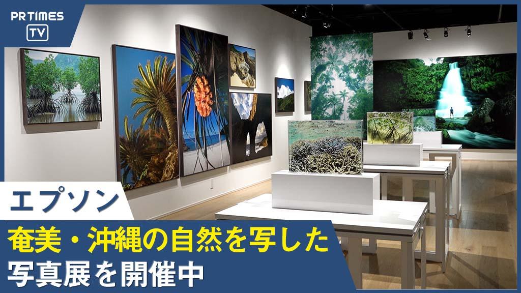 エプソン、東京・丸の内のエプサイトギャラリーで、三好和義写真展『世界の楽園・奄美 沖縄』開催中