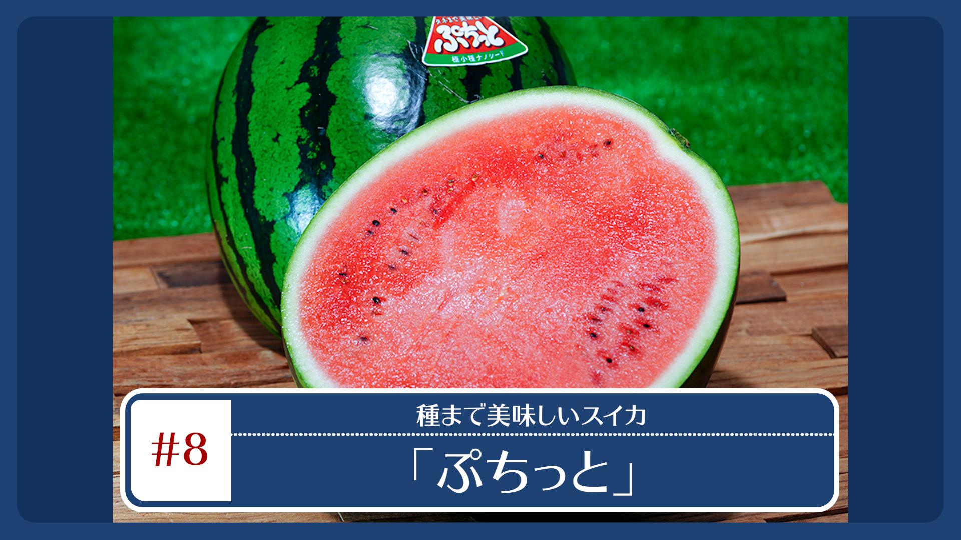 奈良・萩原農場が開発した最新品種のスイカ -タネまで美味しい「ぷちっと」- 各種ECサイトにて販売中!