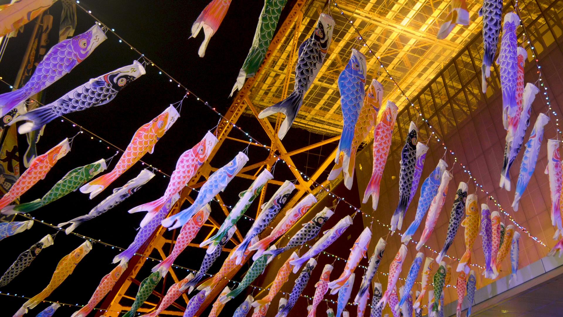 6mのさんまのぼり、東京の空を泳ぐ!